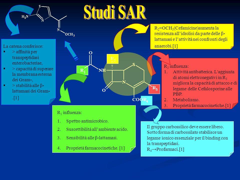 Studi SAR R2=OCH3(Cefamicine)aumenta la resistenza all'idrolisi da parte delle β-lattamasi e l'attività nei confronti degli anaerobi.[1]